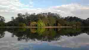 Marche au parc